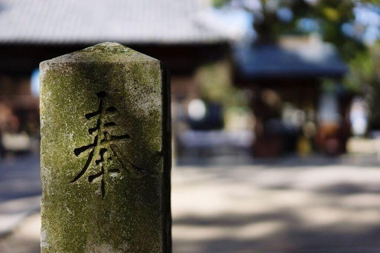 Japan temple Temple Japan Day Close-up Green Color Saga,Japan