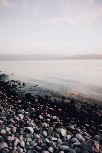 Lake Constance Bodensee By The Shore EyeEm Nature Lover Vscocam VSCO Melancholic Landscapes