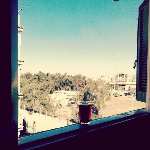 Day Tree Sky City Tea Tea Time Tea Cup Libton