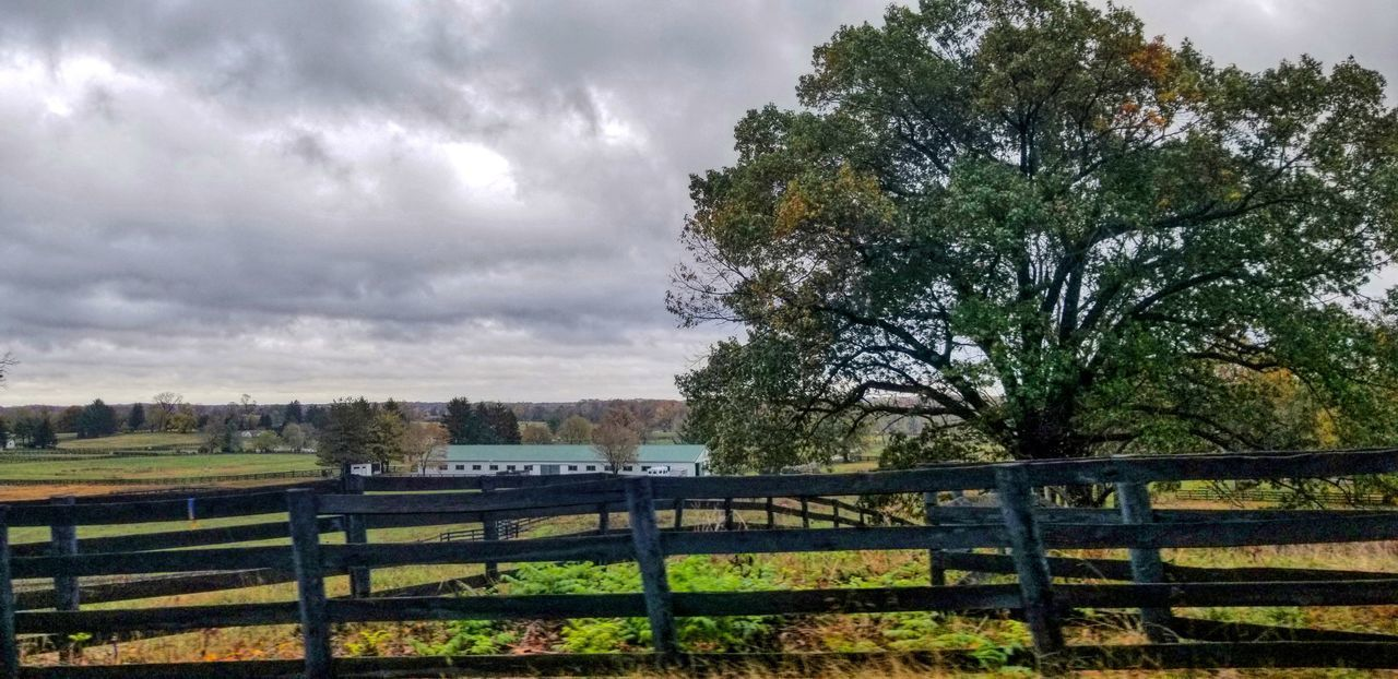 tree, sky, cloud - sky, plant, barrier, fence, boundary, nature, landscape, no people, beauty in nature, land, field, tranquility, tranquil scene, scenics - nature, non-urban scene, rural scene, grass, outdoors