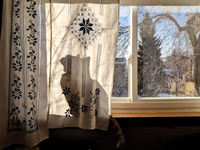 Close-up of curtain against window