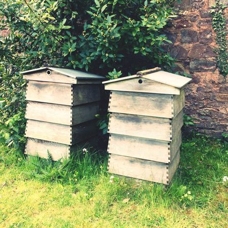 Bee Hives Wooden