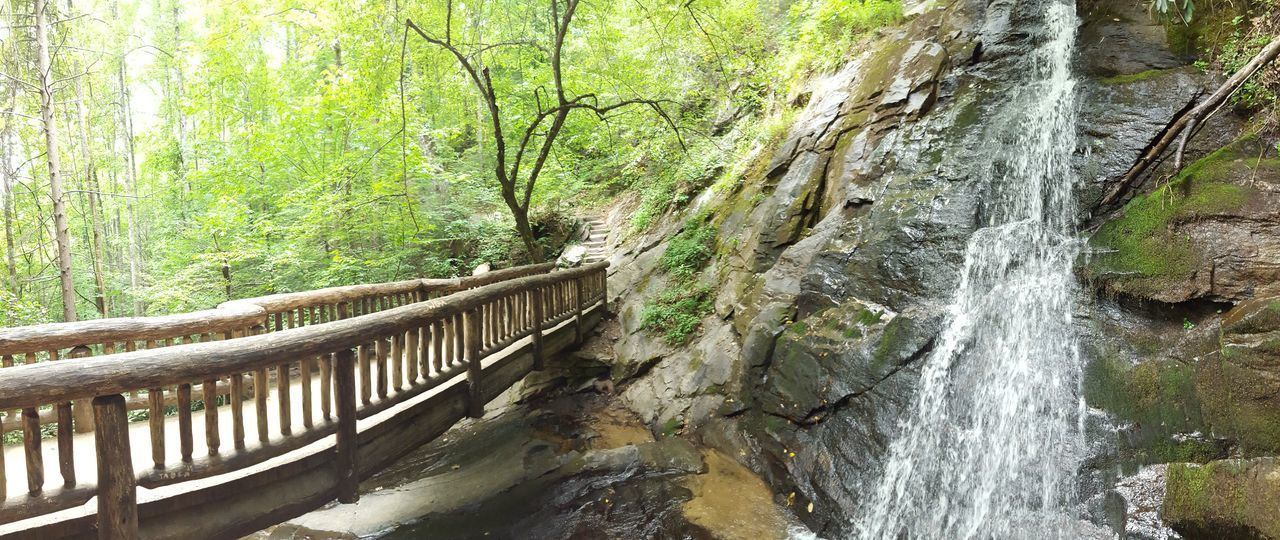 Juney Whank Falls Beauty In Nature Day Forest Green Leaves Nature Nature Trail No People Outdoors Railing Scenics Tree Water Waterfall
