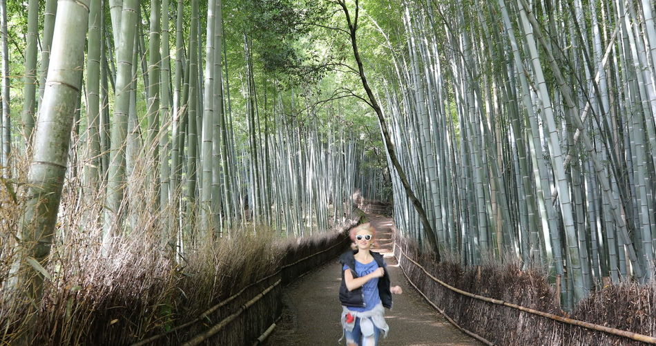 Woman Standing On Footpath Amidst Bamboos In Forest