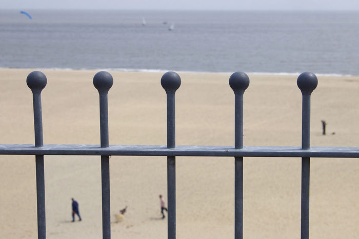 Through the Railings you see the Beach. Animal Themes Beach Beauty In Nature Bird Close-up Coast Coastal Landscape Coastline Day Focus On Foreground Horizon Over Water Nature Outdoors People Railings Railings Promenade Coastline Sand Scenics Sea Shore Sky Water