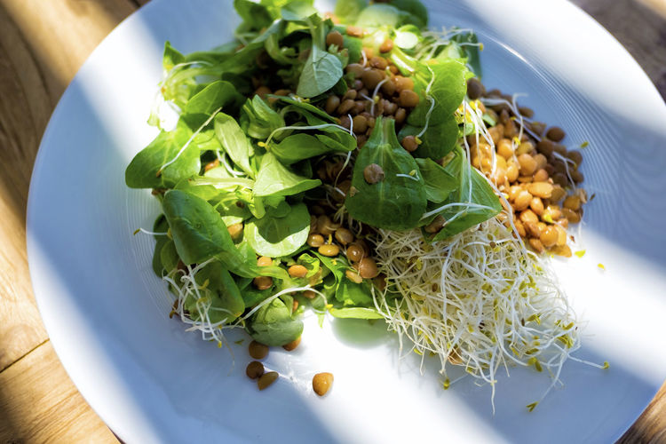 Above view of a lentils salad on a white plate Food Food And Drink Freshness Healthy Eating Wellbeing Ready-to-eat Plate High Angle View No People Vegetable Indoors  Serving Size Table Green Color Close-up Still Life Salad Day Bowl Meal Garnish Vegetarian Food