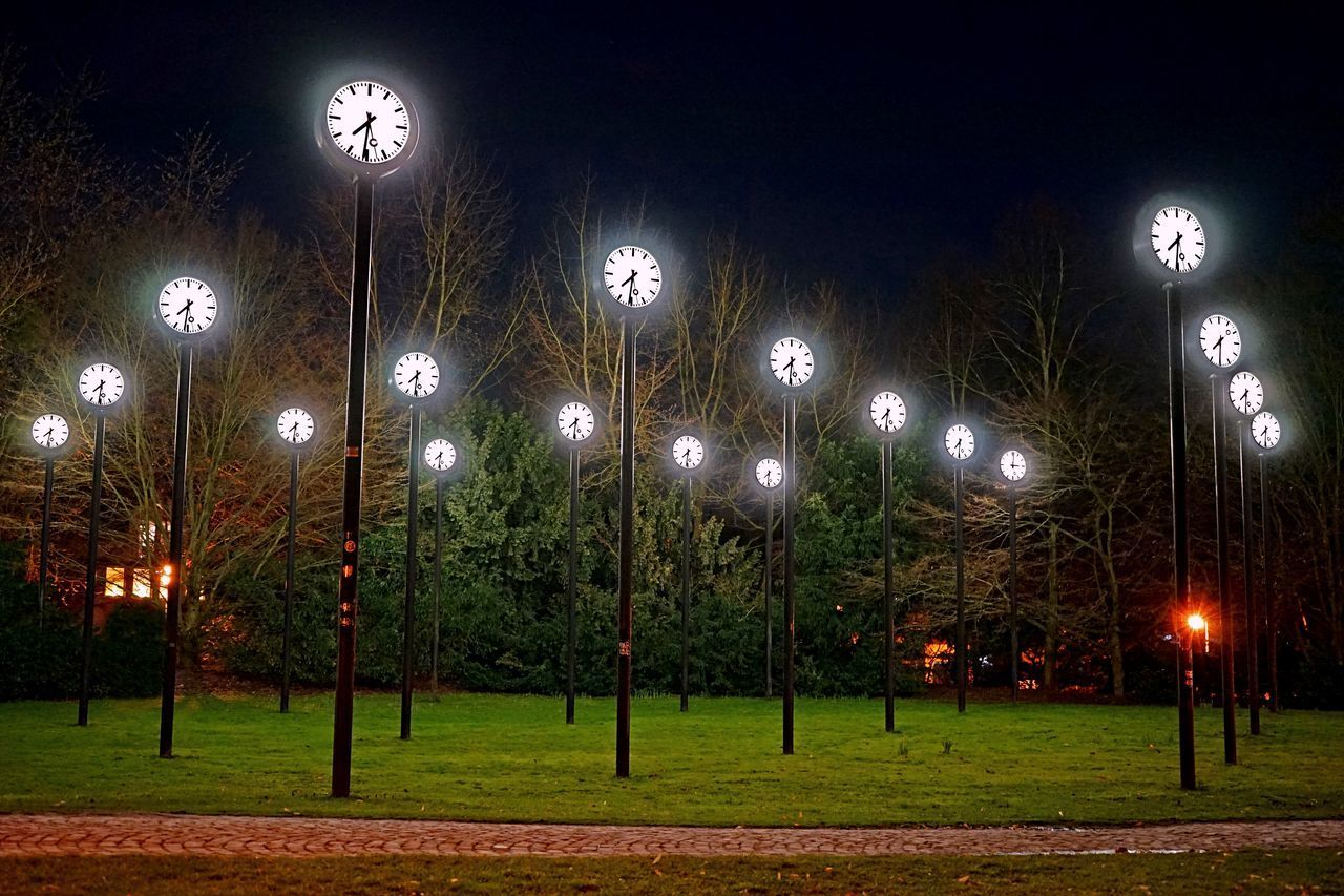 illuminated, night, lighting equipment, plant, no people, glowing, street light, tree, light, electricity, outdoors, land, street, technology, nature, sky, grass, architecture, light - natural phenomenon, green color
