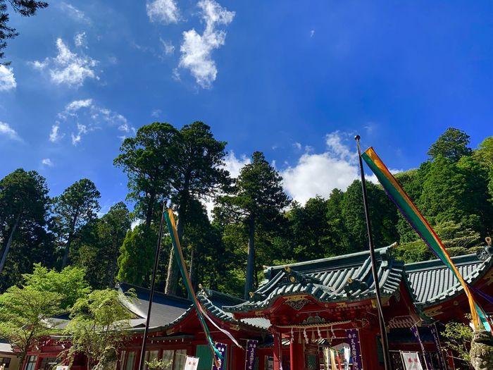 Low angle view of amusement park against blue sky