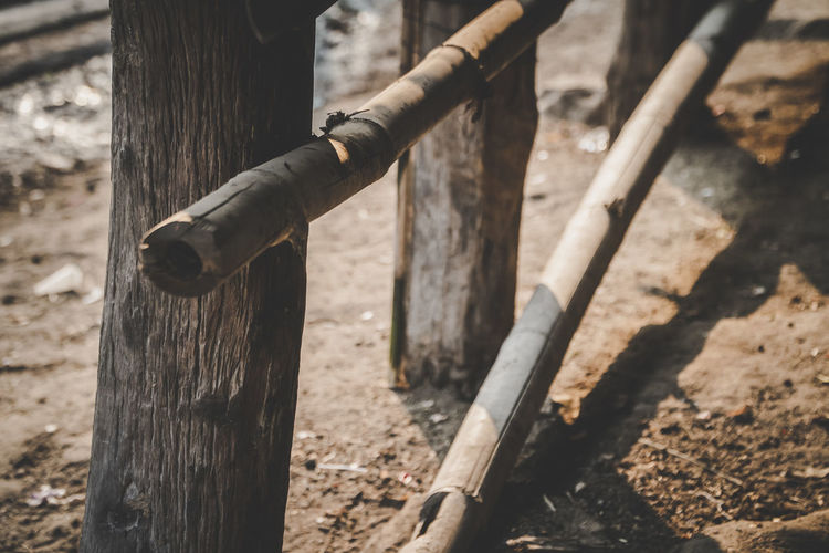Wood - Material Day No People Focus On Foreground Sunlight Nature Outdoors Field High Angle View Boundary Fence Barrier Metal Tree Land Close-up Built Structure Bamboo Wood Post Wooden Post