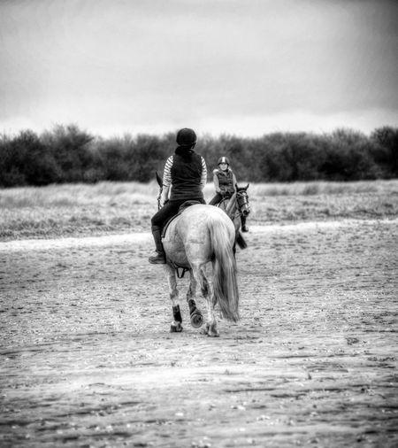 At Theddlethorpe Theddlethorpe Beach Blackandwhite Black And White Horse Horses Horse Riding Horseriding