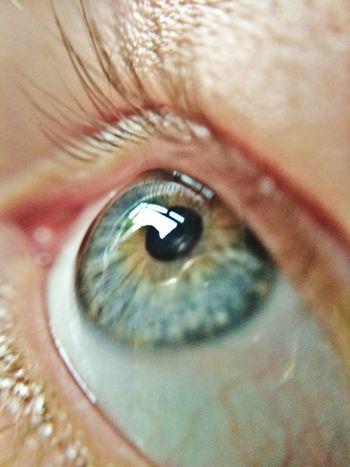 Human Eye Human Body Part Eyelash Eyesight Iris - Eye Sensory Perception Eyeball One Person Adult People Close-up Adults Only Eyebrow One Woman Only Indoors  Only Women Day Ophthalmologist