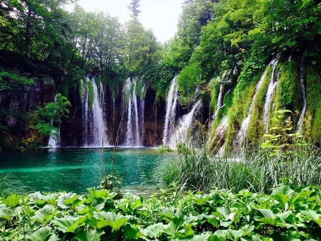 Waterfall Water Waterfall Lake Flowing Water Lake View Beauty In Nature Nature Tree Trees Forest Green Color Outdoors Plitvice Lakes National Park National Park Park Cloud Cloud - Sky Clouds Sky Skyporn Mountain Landscape Nature Croatia Summer
