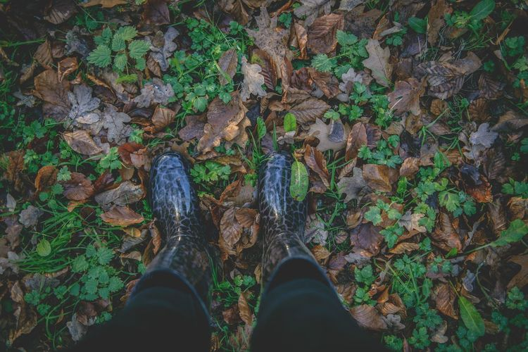Shoe Human Leg Personal Perspective Standing One Person High Angle View Outdoors Women Day Close-up People Adult Autumn Autumn Leaves Boots Walk In The Park