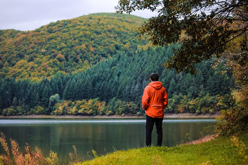 Rear view of man standing by lake against trees