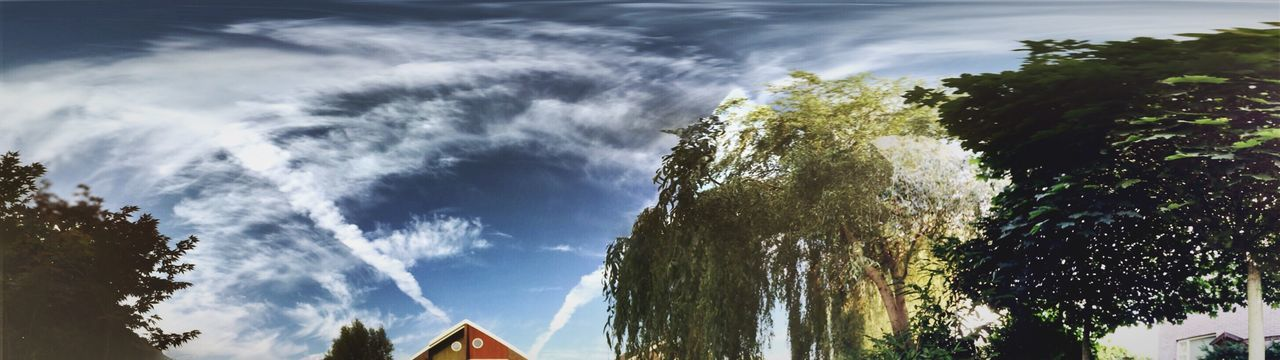 Sky Clouds Sunny Day Weeping Willow Vapor Trails