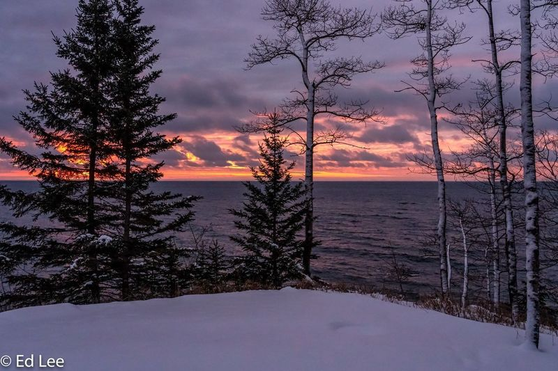 Morning light on Lake Superior Winter Minnesota Streamzoofamily Malephotographerofthemonth Lake Superior Sunrise_sunsets_aroundworld Sunrise Tree Plant Snow Sunset Winter Cold Temperature Beauty In Nature Sky Nature Tranquility Scenics - Nature Tranquil Scene No People Cloud - Sky Water