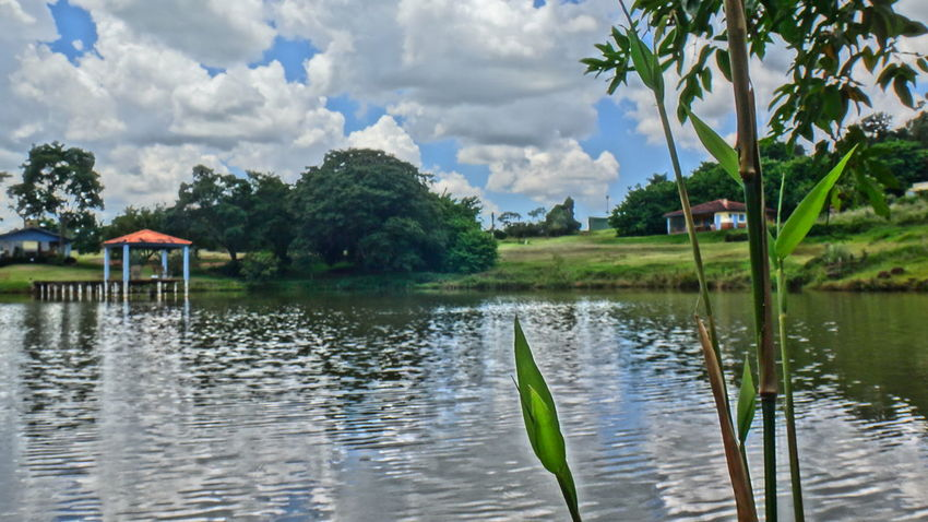 AVARE SAO PAULO BRAZIL Beauty In Nature Calm EyeEm Team Farm Horizontal Symmetry Lake Lakeshore Nature Outdoors Reflection Relaxing Moments River Scenics Standing Water Summer Symmetry Tranquil Scene Tranquility Tree Tropical Climate Water Waterfront