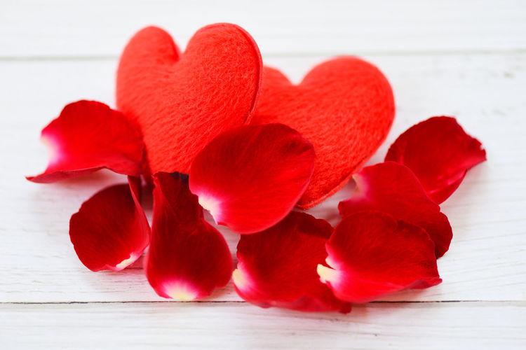rose petals and