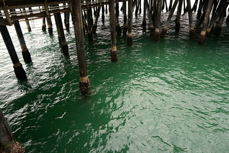 No People Sea_collection Water Collection  Pacific Ocean Water Reflections Sony A5000 Bridge - Man Made Structure Wooden Posts Santa Monica Pier California Dreamin Visual Creativity The Great Outdoors - 2018 EyeEm Awards Summer Road Tripping Humanity Meets Technology