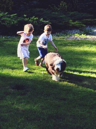 Dog❤ fun Kids Being Kids