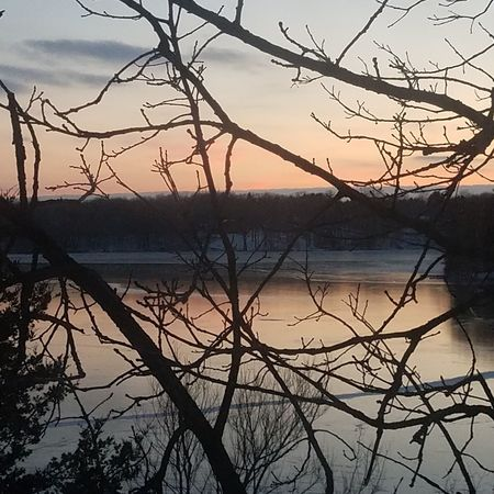 Sunset over frozen lake. Lake Bare Tree Reflection Nature Beauty In Nature Sunset Water Frozen Lake
