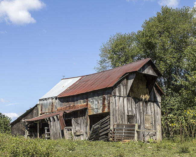 A rural barn with hayloft. Built Structure Architecture Sky Tree Abandoned Nature Building Exterior Field Damaged No People Wood - Material Decline Agricultural Building Deterioration Old Barn Barns Country Scene Farm Vintage Rustic Weathered Americana Barn Barnwood Hayloft