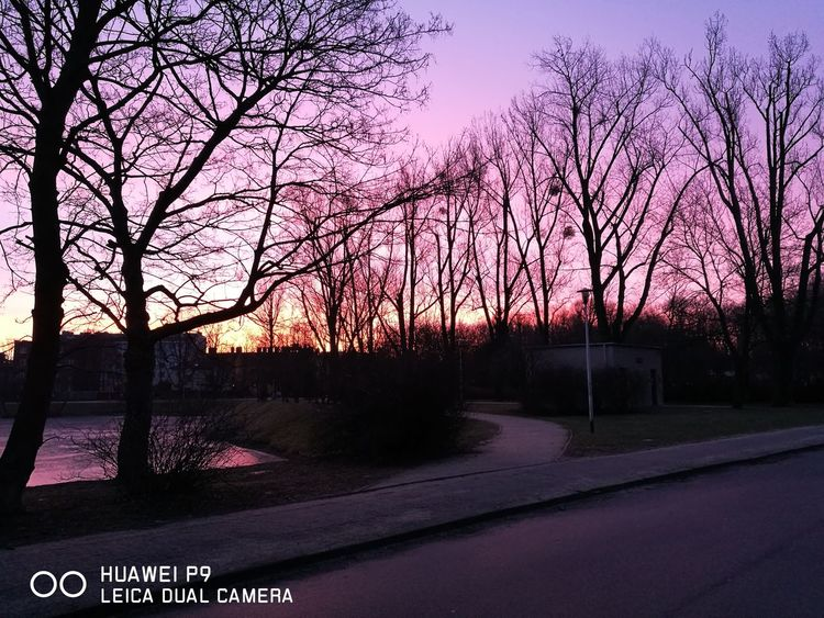 Włochowski świt. Sky No People Outdoors Nature Landscape Tree Beauty In Nature No Edit/no Filter Pink Clouds Warsaw Włochy Beautiful Nature Poland Poland 💗
