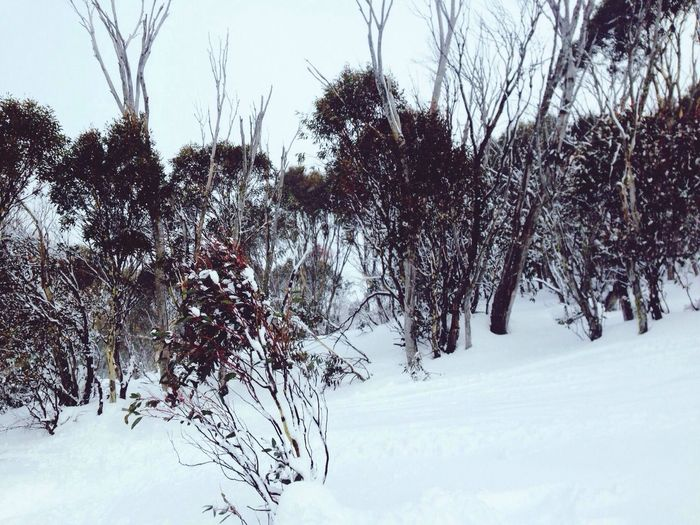 Mad snow up at Perisher First Eyeem Photo