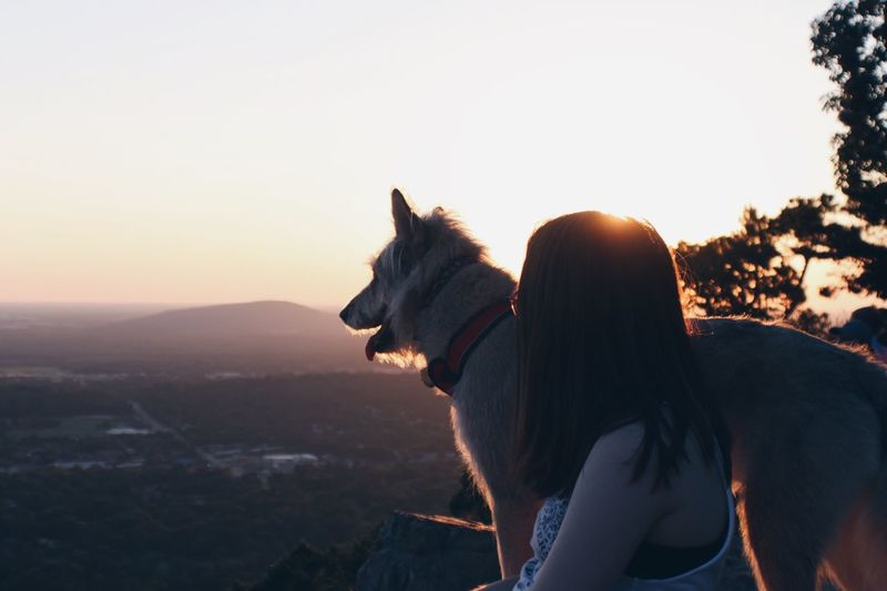 good boye vol.2 Dog Domestic Animals Pets One Animal Animal Themes Mammal Sunset Side View Sky Clear Sky Outdoors Nature Day One Person People EyeEm Selects Sommergefühle