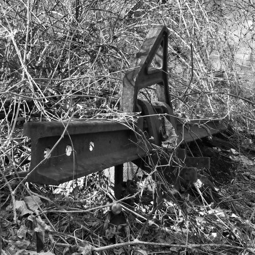 Absence Black And White Broken Close-up Damaged Day Deterioration Empty Field Grass Grassy Growth Monochrome Nature No People Non-urban Scene Obsolete Old Outdoors Plant Rail Railroad Track Run-down Tranquility Wood - Material