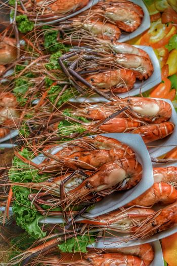High angle view of plates of cooked prawns