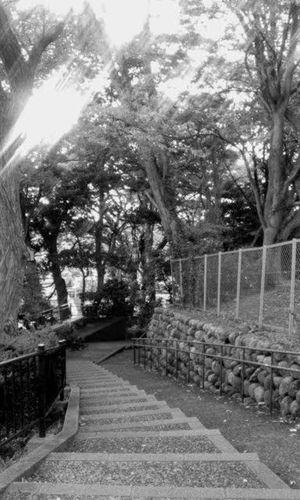 大乗寺坂 Kanazawa Japan Outdoors Day Nature No People Landscape EyeEm Ishikawa, Japan Walking Around 🇯🇵 Japan Beauty In Nature Japan Scenery Japan Photography Eye Em Nature Lover Street SrreetPhoto