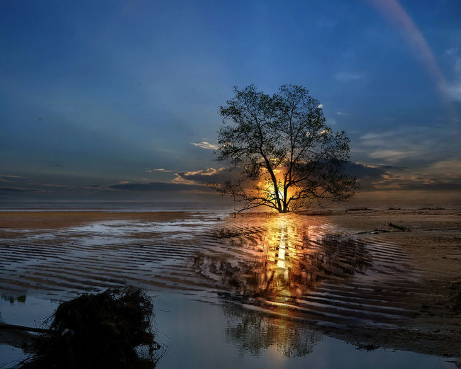sunset at Tanjung beach Sky Tree Reflection Water Plant Beauty In Nature Scenics - Nature Tranquility Tranquil Scene Nature Cloud - Sky Land No People Non-urban Scene Outdoors Waterfront Sunset Beach Lake Tree Sunset Beach Sunset