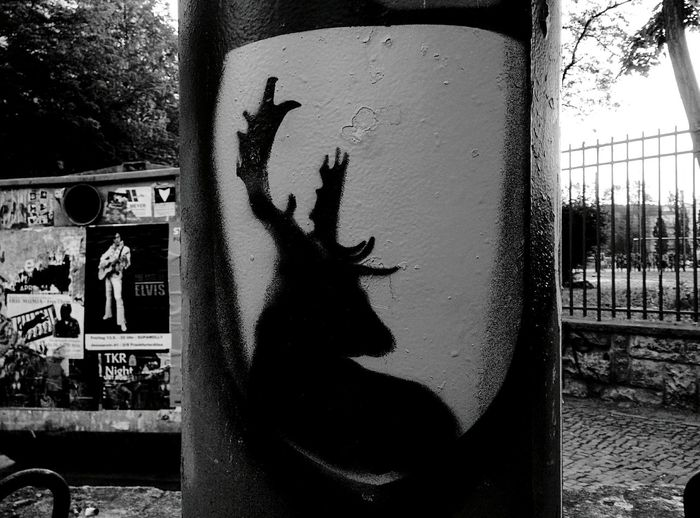 Day 317 - Cerf Berlin Blackandwhite Streetart Cerf 365florianmski 365project Day317