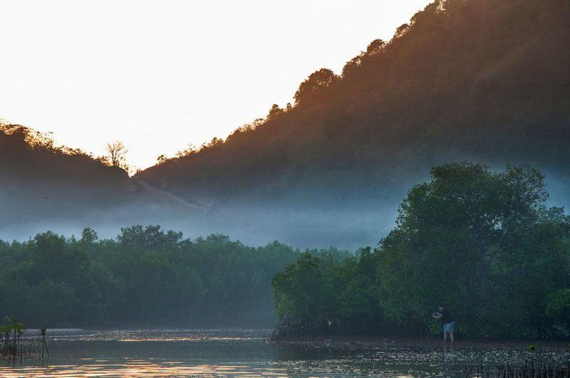 Nature Landscape Beauty In Nature Outdoors Lombok INDONESIA Travel Sunrise Landscaper