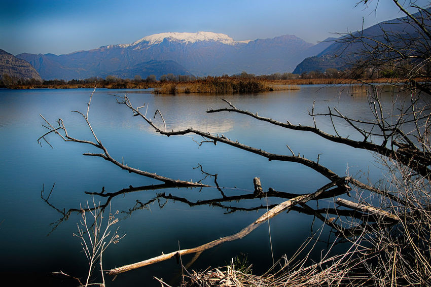 Riserva naturale Torbiere del Sebino Acqua Beauty In Nature Blue Blue Sky Lago Lake Landscape Mountain Mountains Natura Nature Neve No People Ramo Reflection Riflesso Sky Snow Torbiere Torbieredelsebino Tranquil Scene Tranquility Trees Water