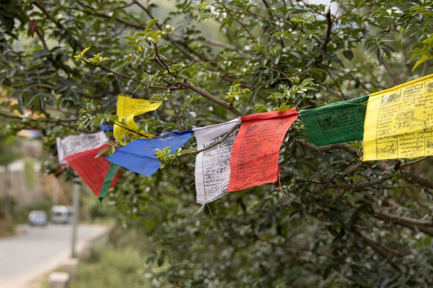 Outdoors Bhutan Prayer Flags  Himalayas Flag Cultures Colors Colorful Tibet Close-up Travel ASIA No People Unfiltered Nofilter Travel Photography