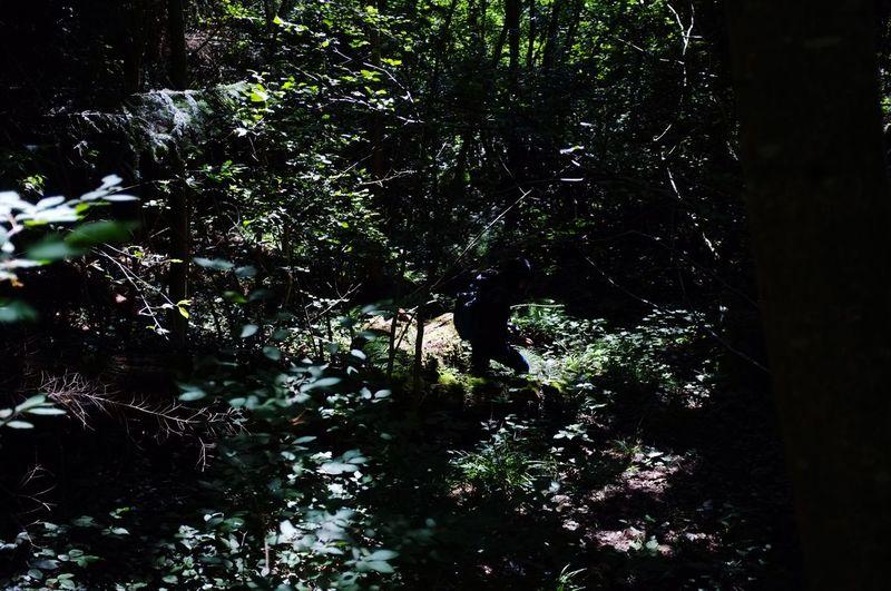 Nature always calls, just listen EyeEm Nature Lover Can You Find The Hidden...? Portrait Friend