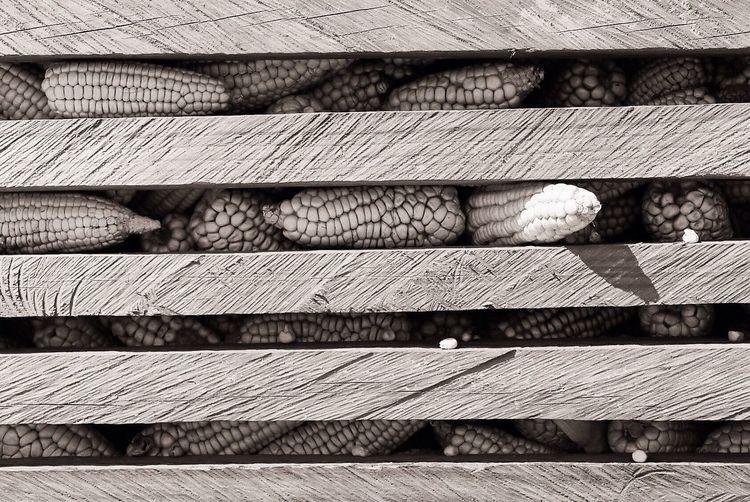 Corns Seen Through Window In Barn