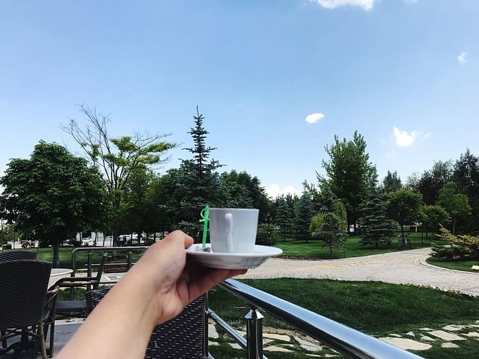 I need Turkish coffee ☕️ Turkish Coffee Architect Life Student Life University Campus University Tree Plant Hand One Person Human Body Part Human Hand Sky Cup Personal Perspective Holding Real People Nature Day Food And Drink Drink Lifestyles Mug Unrecognizable Person Refreshment Leisure Activity
