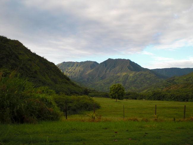 Hawaii Kauai Tropical Paradise Jurassic Pak Napali Coast Water Waterfalls An Eye For Travel Summer Exploratorium