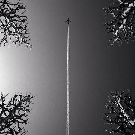 Blackandwhite Monochrome Airplane Lookingup Tokyo