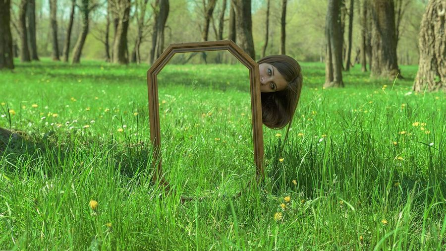 Mirror Grass Green Reflection