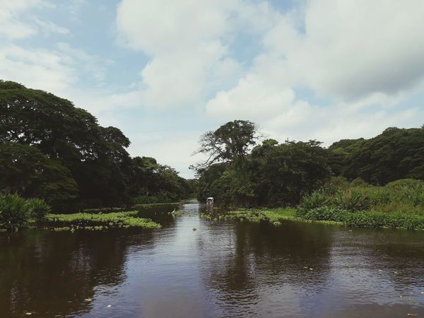 Nicaragua Tranquility Day Outdoors Tree Water Reflection Lake Cloud - Sky Landscape Nature Sky Forest Beauty In Nature No People Scenics Flood Tree Area Mountain