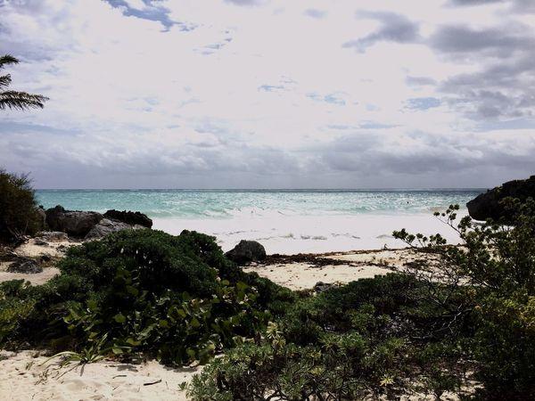 Paradise Mexico