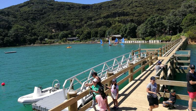 Fishing on wharf Small Sail Boat Wharf Fishing Kawau Island School Camp Children High Angle View Tree Water Large Group Of People Day Real People Outdoors Group Of People
