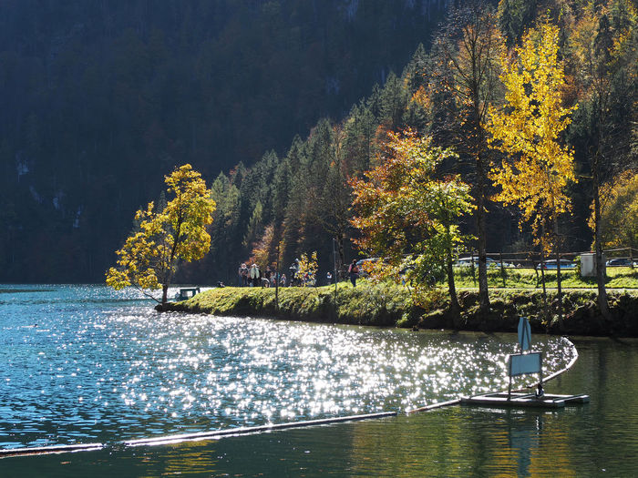 Autumn Beauty In Nature Day Forest Nature Nautical Vessel No People Outdoors Scenics Sky Tranquil Scene Tranquility Tree Water Waterfront