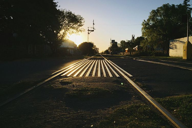 Way Train Rails Tree Sky Plant Nature Transportation No People Sunset City Road Architecture Diminishing Perspective Outdoors The Way Forward Sunlight Street Illuminated Clear Sky Water Direction
