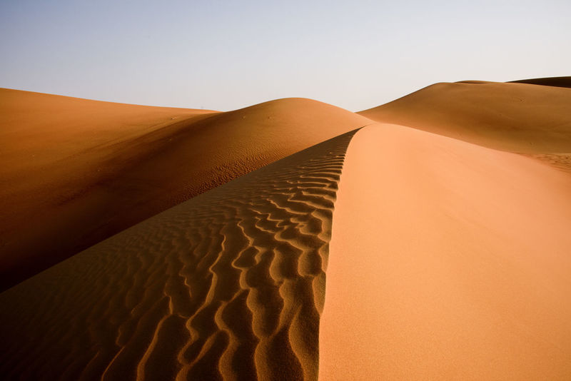 Abu Dhabi Abu Dhabi UAE Abudhabi Arab Arabian Arabian Desert Arabic Beauty In Nature Desert Desert Beauty Desert Curves Desert Dunes Desert Landscape Desert Lines Deserts Around The World Dunes Gulf Landscape Liwa Liwa Desert Middle East Nature