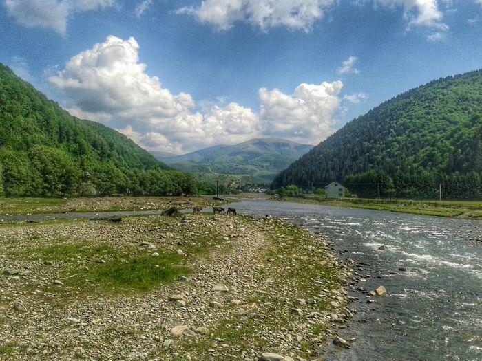 карпати гори Mountains Mountain River Karpaty Ukraine Green HDR